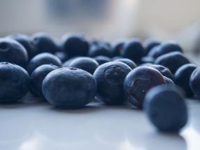 blueberries-925660_960_720